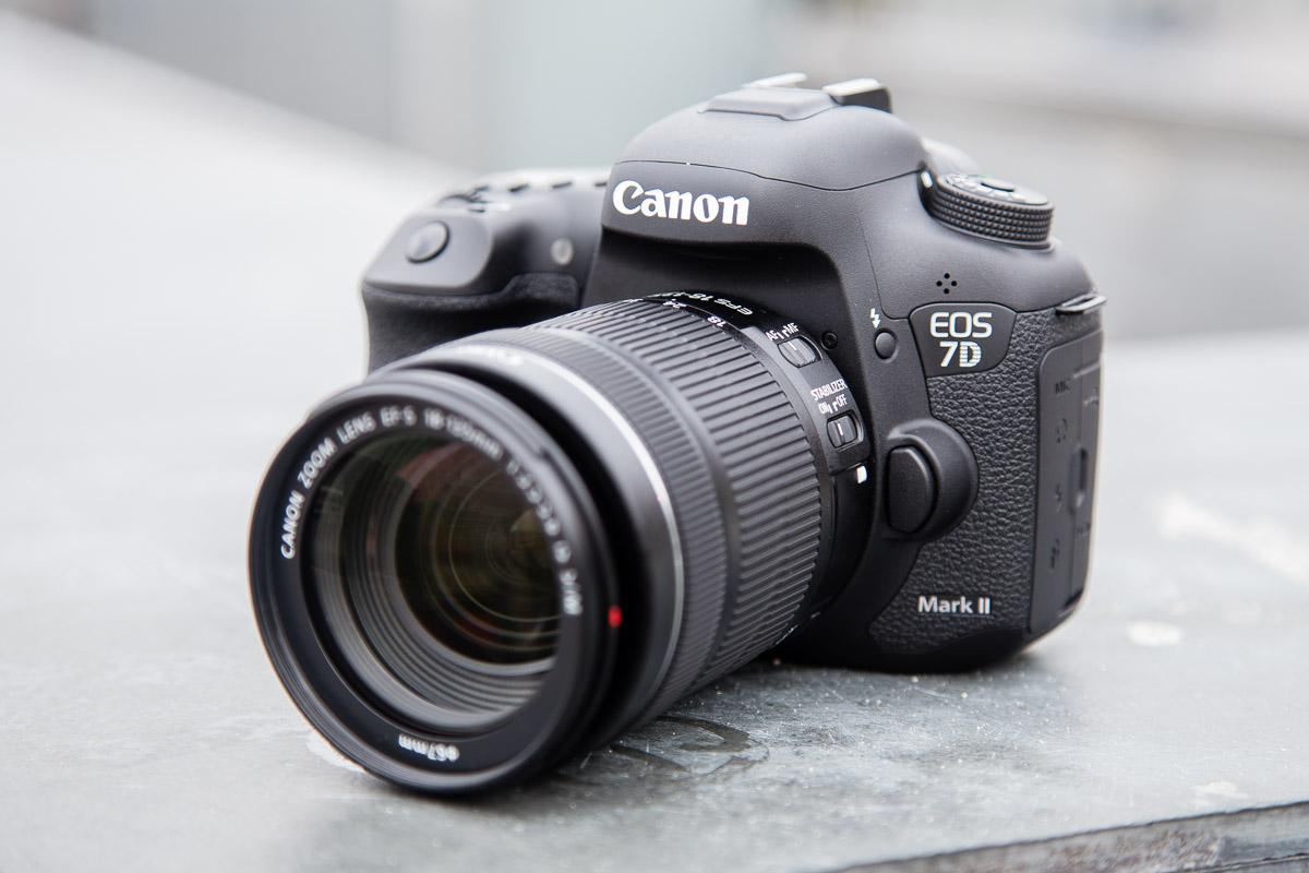 Camera Top 5 Dslr Cameras For Beginners top 5 dslrs for beginners clapham studios dslr