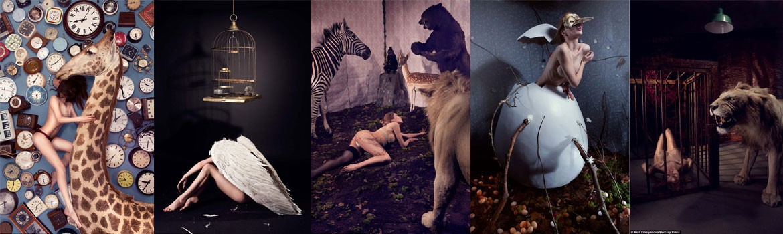 Aida-Studio-Photography-Banner